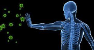 مواد غذایی و عادت هایی که میتواند سیستم ایمنی بدن شما را برای مقابله با ویروسها و بیماریها تقویت کند.